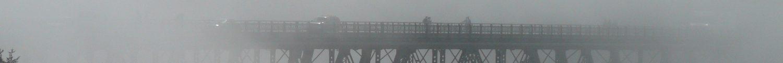 cropped-fogwatch046.jpg